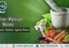 online pansar store