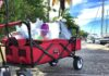Foldable Wagon