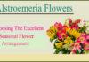 alstroemeria flowers- Alstroemeria Flowers- Choosing The Excellent Seasonal Flower Arrangement
